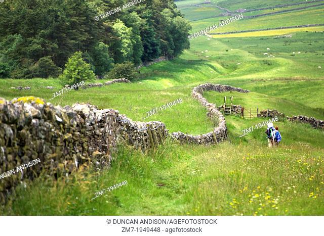 Two hikers walking the route alongside Hadrians Wall. While the wall has long since gone, you can see the Vallum (v shape ditch) to the right