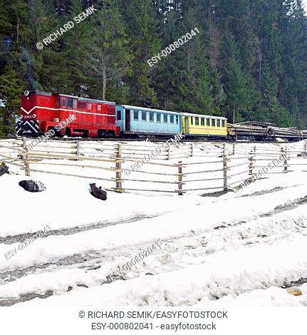 narrow-gauge motor locomotive on wood railway, Viseu de Sus, Romania