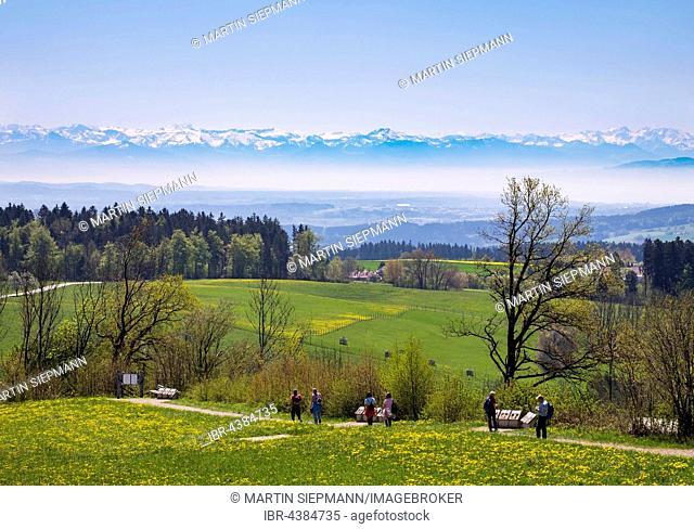 View from Höchsten, Alps behind, Upper Swabia, Swabia, Baden-Württemberg, Germany