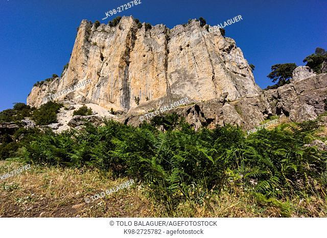 Parque Natural de las Sierras de Cazorla, Segura y Las Villas, Jaen province, Andalusia, Spain