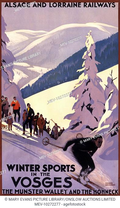 Winter sports in the Vosges, the Munster Valley and the Hohneck with a skier zooming down a snowy slope between fir trees