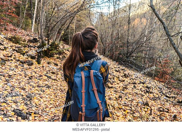 Spain, Ordesa y Monte Perdido National Park, back view of woman with backpack in autumnal forest