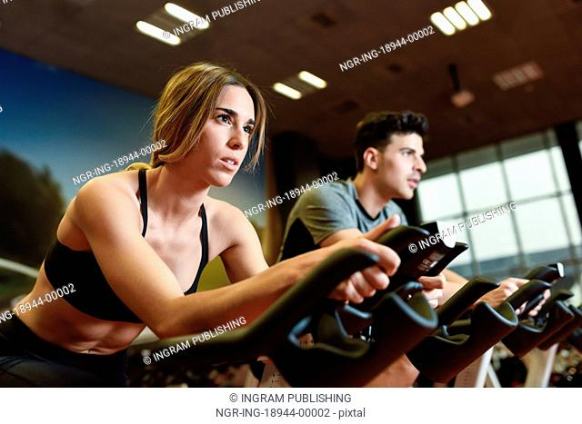 Attractive woman and man biking in the gym, exercising legs doing cardio workout cycling bikes. Couple in a spinning class wearing sportswear
