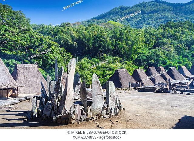 Berhamparan megalith stones. Bena village. Flores island. Indonesia, Asia
