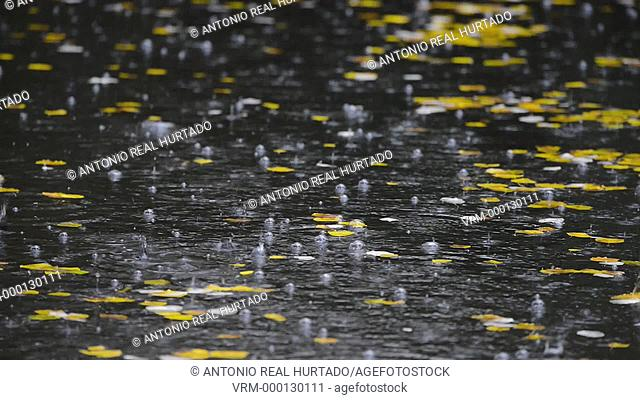 Rain autumn. Almansa. Albacete province. Spain