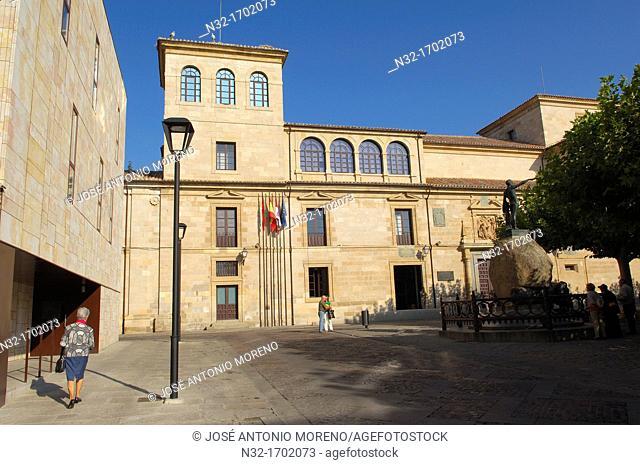 Palacio de la Diputación Provincial (former Hospital de la Encarnación), Viriato Square, Zamora, Castilla-Leon, Spain