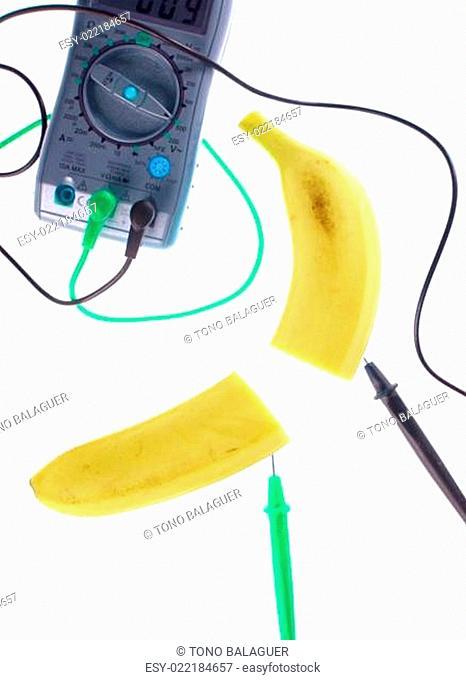 genetic engineering food, fruit investigation