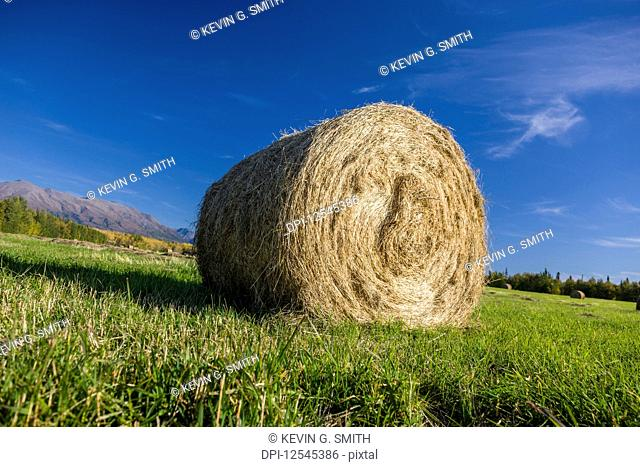 Bale Rolls In Plowed Stock Photos And Images Age Fotostock
