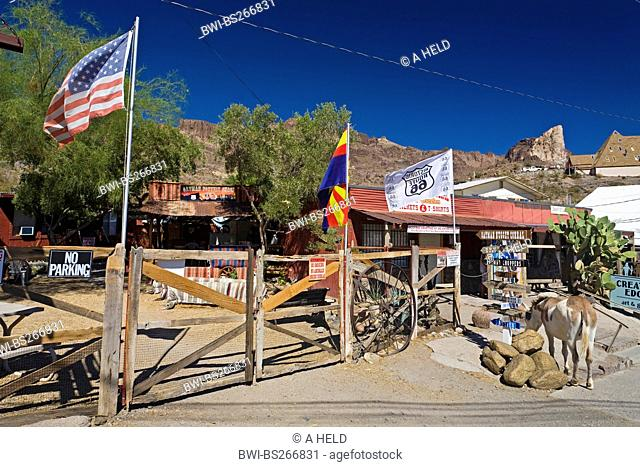 gold mining town Oatman beside historic Route 66, USA, Arizona, Oatman