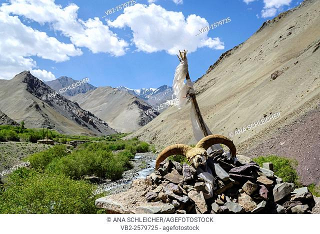 Horns of ram over a welcoming stupa. Trekking in Markha valley (Laddakh, India)