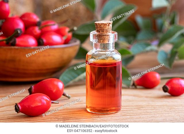 A bottle of rose hip seed oil with fresh plant