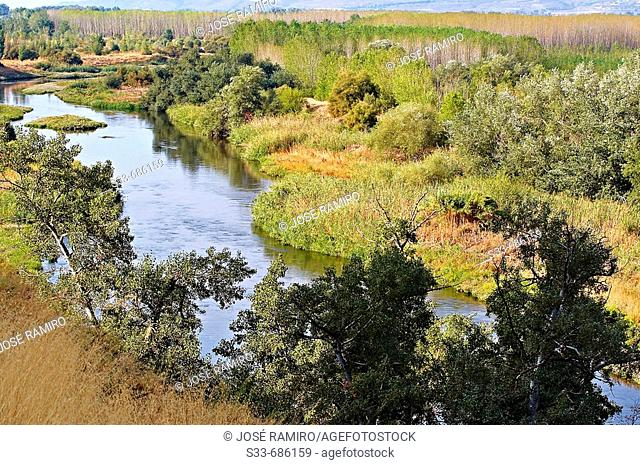 Jarama river. Titulcia. Madrid. Spain.