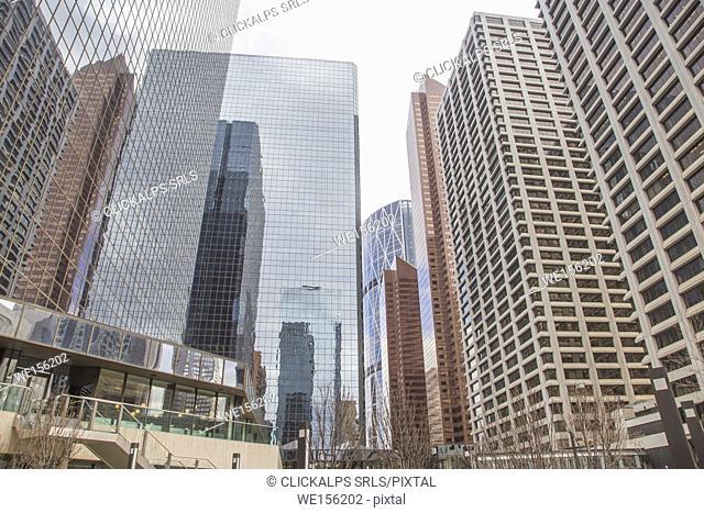 Skyscrapers in the center of Calgary - Canada - North America