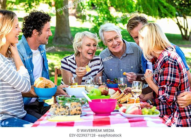 Friends having a picnic