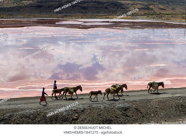 Kenya, lake Magadi, Masai people with their donkeys, aerial view