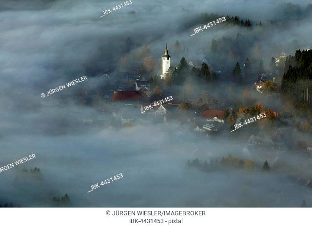 Christ the King Church in morning mist, Titisee-Neustadt, Black Forest, Baden-Wurtemberg, Germany