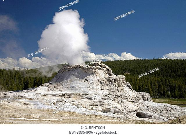 Castle Geyser, USA, Wyoming, Yellowstone National Park