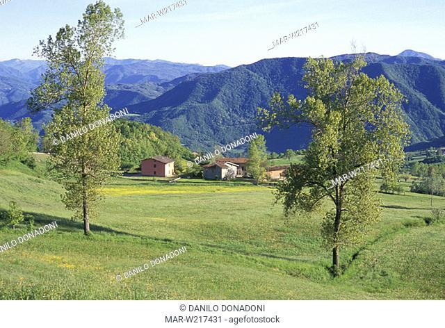 trebbia valley, penice mountain, italy