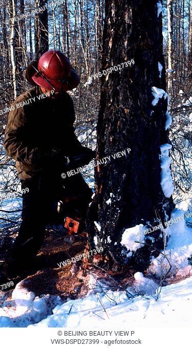 Snow view of lumberman cutting wood in Great Khingan,Heilongjiang province,China