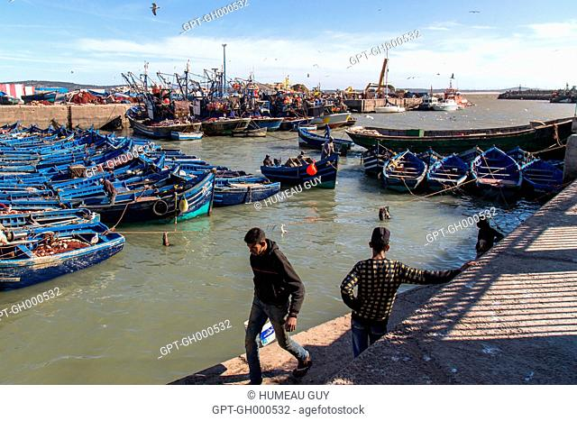 RETURN OF THE FISHING BOATS, THE FISH WILL BE SOLD AT THE FISH MARKET, TRADITIONAL BOATS IN THE PORT, SHIPYARD, ESSAOUIRA, MOGADOR, ATLANTIC OCEAN, MOROCCO