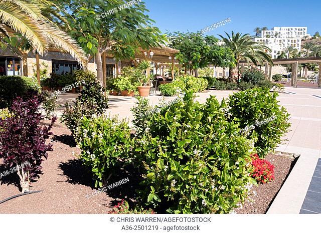 Playitas Resort Las Playitas Tuineje Fuerteventura Canary Islands Spain