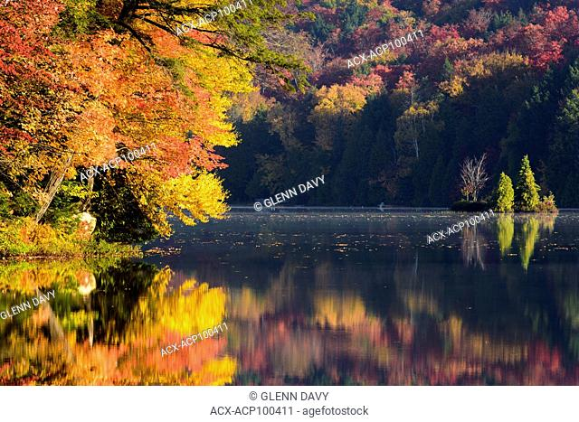 Brilliant autumn leaves highlighted by morning sun and reflected in still waters, Haliburton, Ontario, Canada