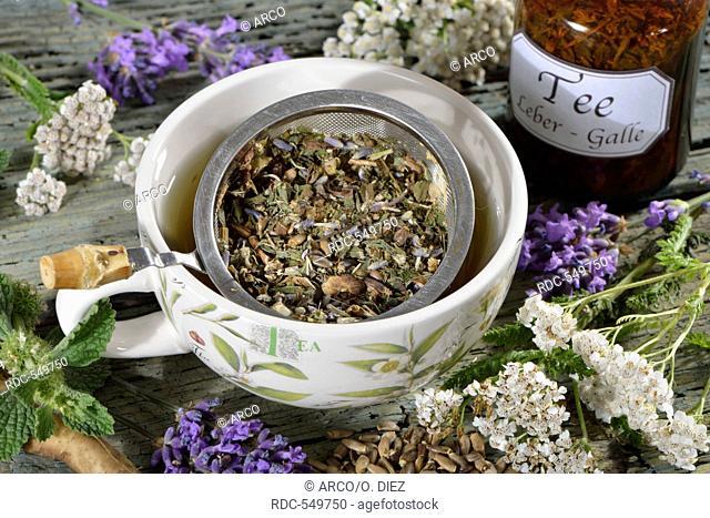 Lavender, Milk thistle fruit, Dandelion root, Peppermint, Yarrow, St. Benedict's thistle / (Lavandula angustifolia), (Silybum marianum), (Taraxacum officinale)