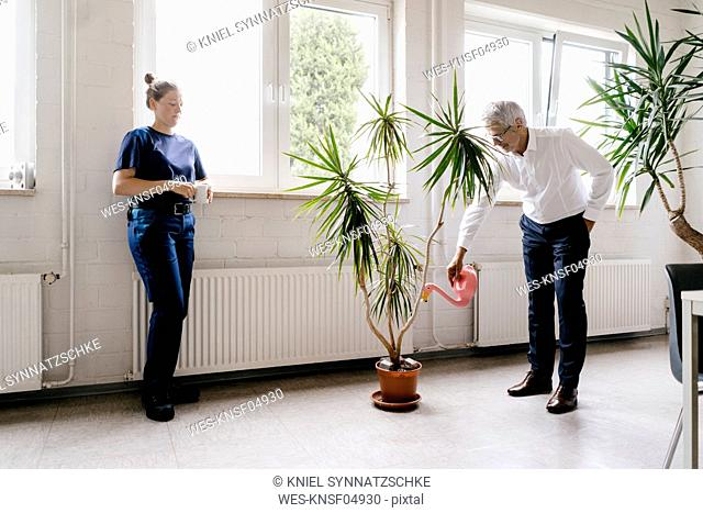 Manager watering plants in recreation room, while worker is drinking coffee