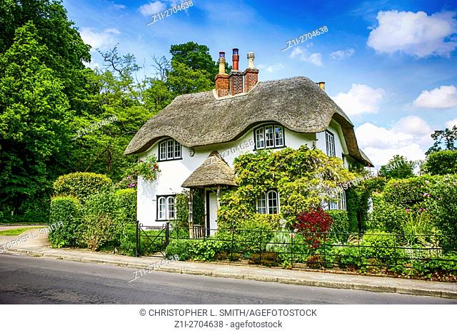 A white painted Thatched roof Cottage at Swan Green Lyndhurst in Hampshire England