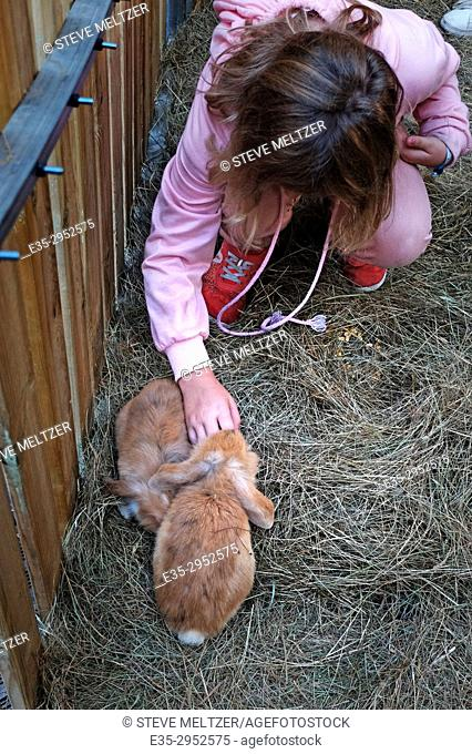 A young girl pets a rabbit at a petting farm in Beziers, France