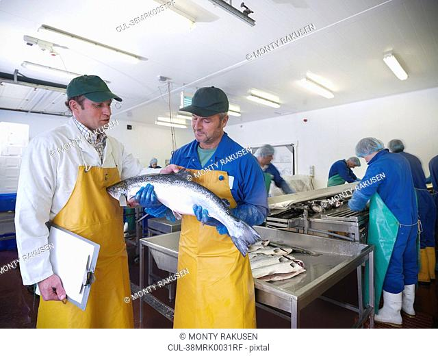 Fishmongers with catch of the day