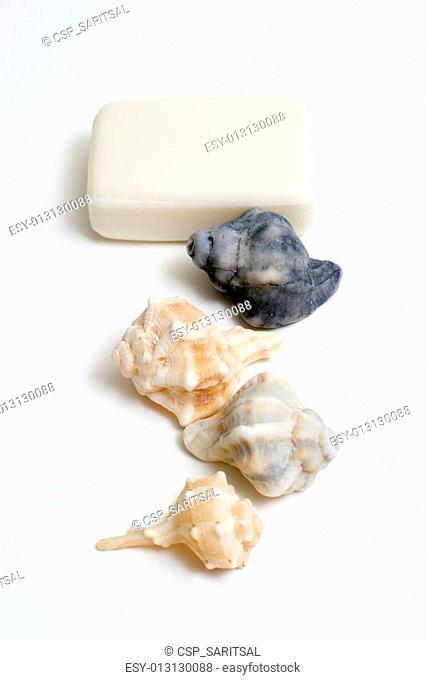 SPA Items -soap and seash