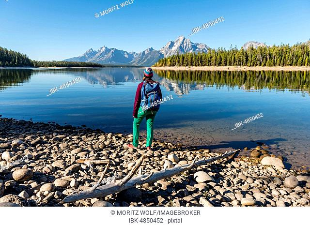 Young woman with rucksack standing on shore, mountains reflected in lake, Colter Bay, Jackson Lake, Teton Range, Grand Teton National Park, Wyoming, USA