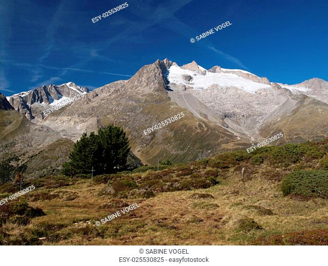views of the aletsch area