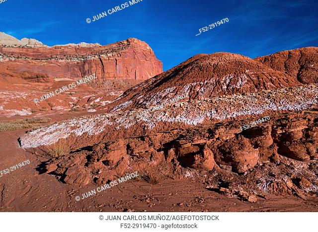 Capitol Reef National Park, Utah State Route 24, Utah, Usa, North America, America