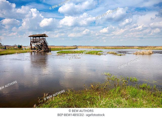 Poland, Podlaskie Province, Narew National Park. Observation tower on the Sliwno-Wapniewo track
