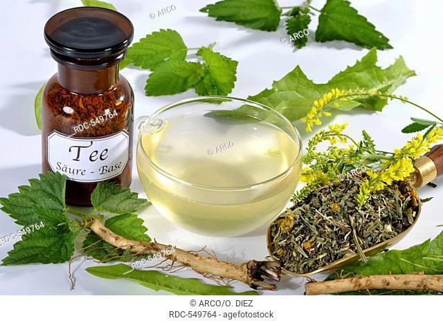 Field horsetail, common horsetail, dandelion root and herb, melilot, balm, lemon balm, plantain leaf, buckhorn plantain, mullein