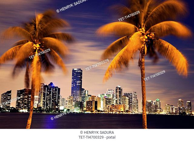 USA, Florida, Miami skyline at dusk