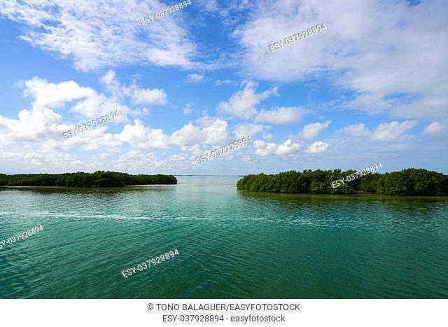 Holbox Yalahau also Conil lagoon in Quintana Roo Mexico