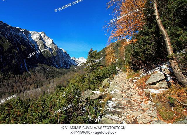 View of the Velka Studena dolina from the trail to Zamkovskeho chata, High Tatras, Slovakia