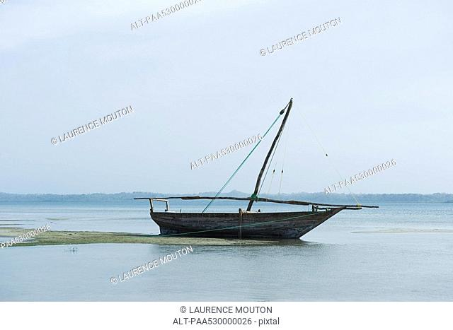 Sail boat tethered near patch of algae