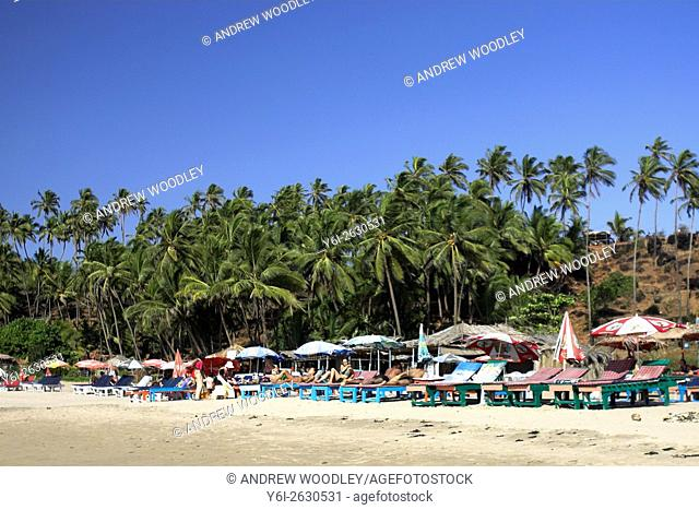 Palm trees back Ozran or Spaghetti Beach Vagator Goa India