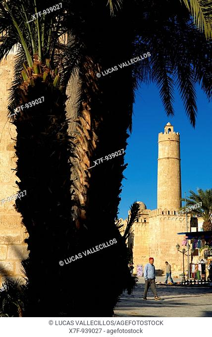 Tunez: Sousse  Medina  Rue el Aghalba, in background the Ribat tower