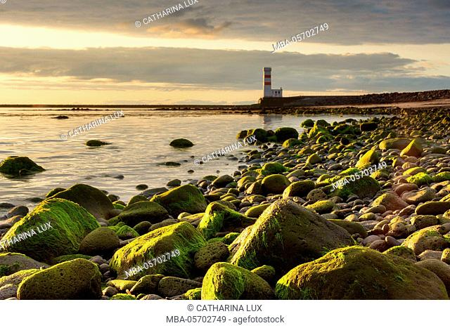 Iceland, Gardskagi, lighthouse, evening light