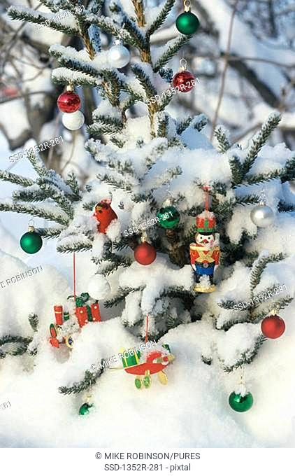 Ornaments hanging on a snow covered Christmas tree