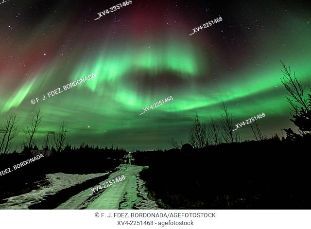 Winter Icelandic landscape with Northern lights background. Laugarvatn. Golden Circle. Iceland