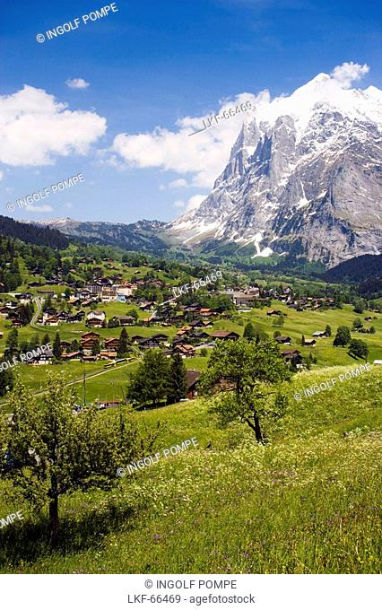 View over Grindelwald to Eiger 3970 m, Bernese Oberland highlands, Canton of Bern, Switzerland