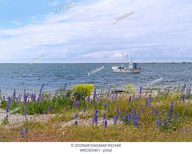 coastline in Sääre, Saaremaa, Estonia