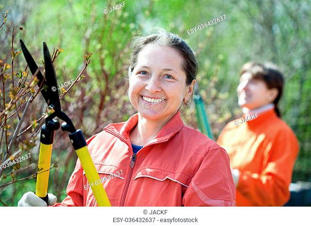 Female gardener cuts branches in the garden in spring