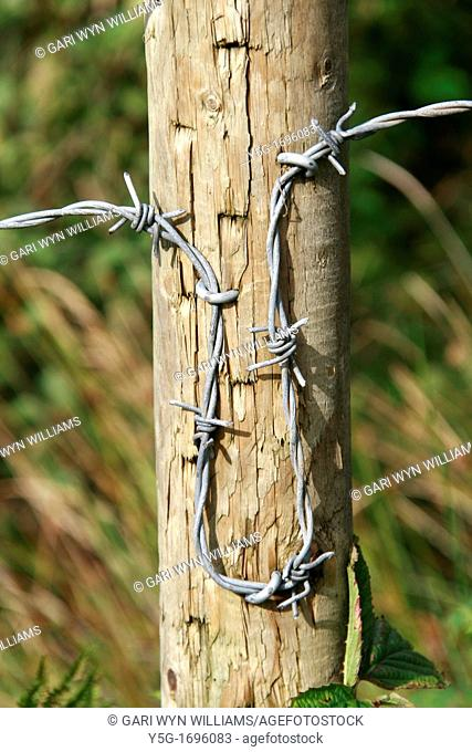 close up detail of barbed wire fence in country